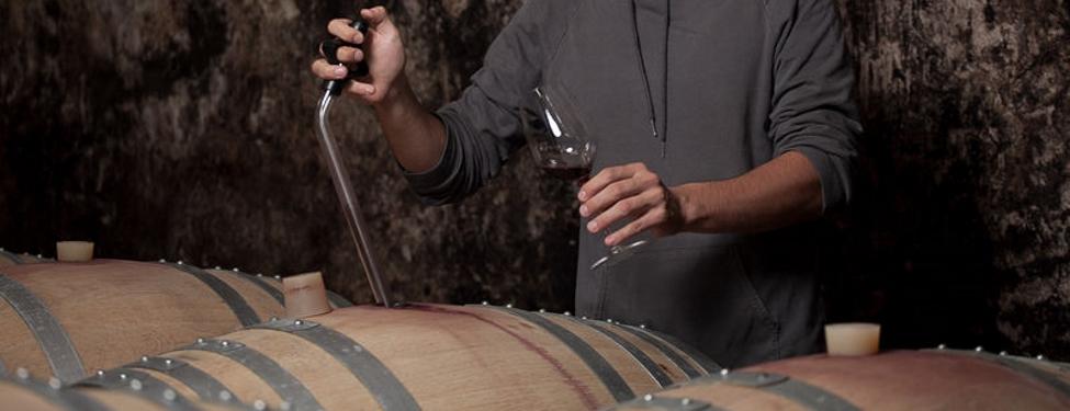 Die Gärverfahren beim Wein – kompakt erklärt — Wein.de